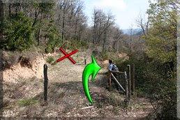 Tras la alambrada, la pista de la derecha