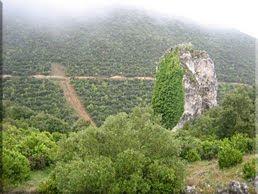 Ladera norte de Txulato visto desde el collado