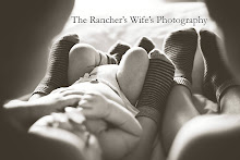 The Rancher's Wife's Boys
