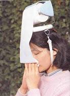 Gripe INFLUENZA A