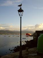 porto de Combarro, de Pereiro