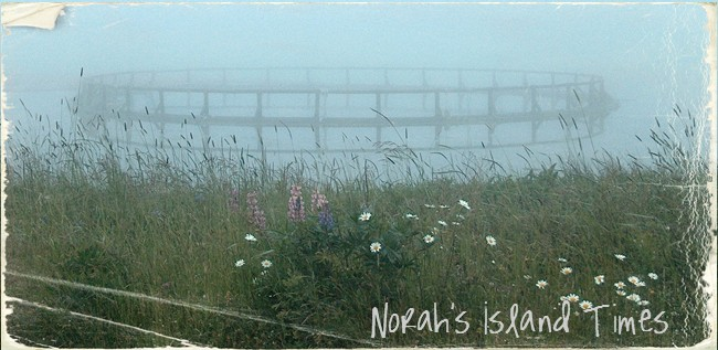 Norah&#39;s Island Times