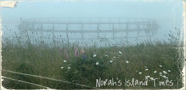 Norah's Island Times