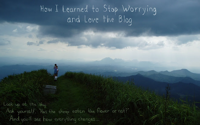 How I Learned to Stop Worrying and Love the Blog