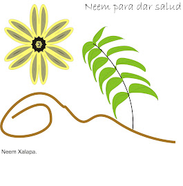 NEEM XALAPA