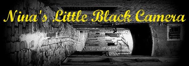 Little Black Camera