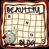 The Bingo Beautiful Blog Award