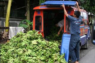 Meer over Indonesie? klik op de foto
