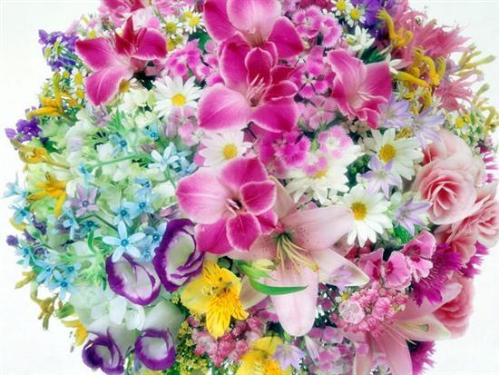Картинки цветов красивые - 0ac