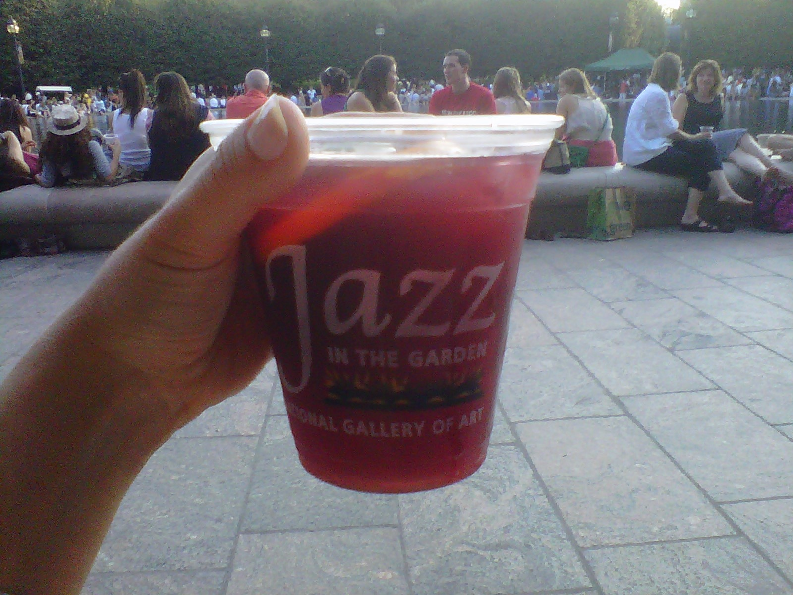 friday night in dc sculpture jazz and free drinks - Jazz In The Garden Dc