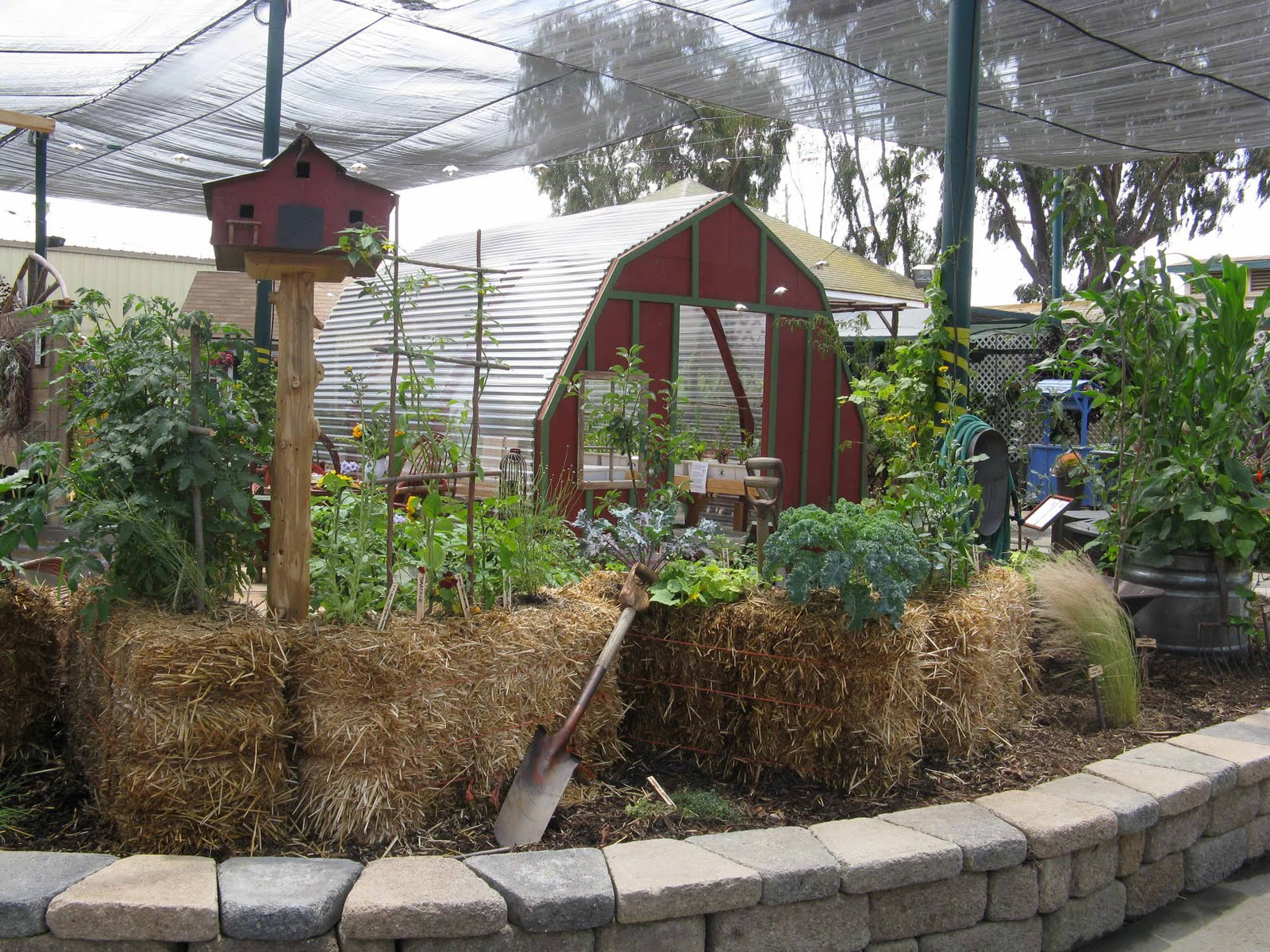 The Green Truth Hay Bale Gardening