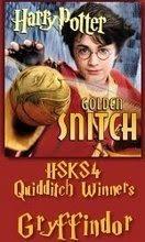 HSKS4 Quidditch Champions