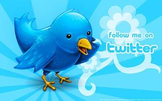 followers su twitter