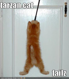 Tarzan kitty.