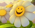 """""""Если вы хотите, чтобы жизнь улыбалась вам, подарите ей сначала свое хорошее настроение."""""""