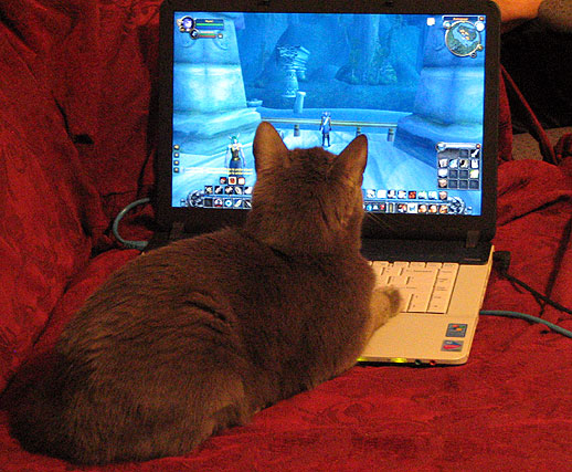 World of Warcraft Obsession by Stacina from flickr (CC-NC-SA)
