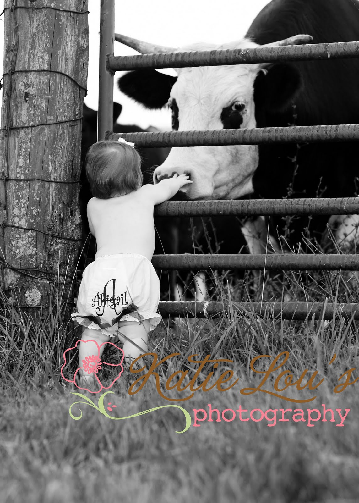 katie lous photography farm fun ky on location