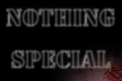 nothing special by allan revich, 2008