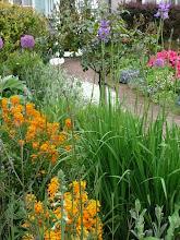 Front garden path