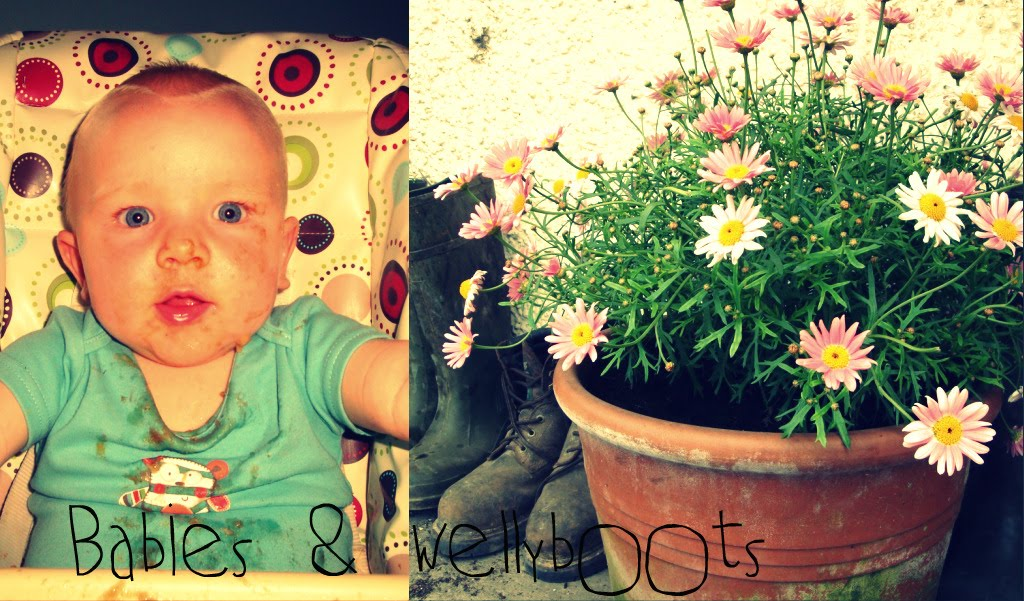 Babies & Wellyboots
