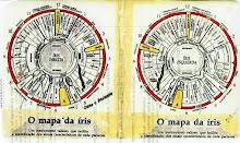 MAPAS IRIDOLÓGICOS