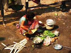 Min resa till Indien 2009