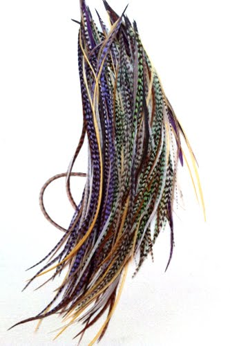 feather hair extensions colors. feather hair extensions?