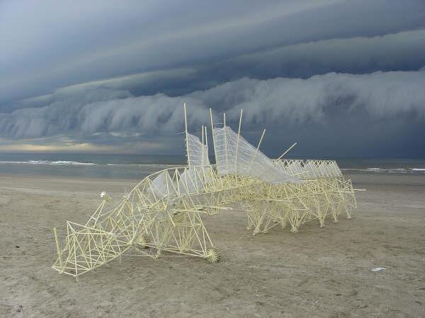 [Animaris+Percipiere+thunder+may+2005+photo+Loek+ven+der+Klis.jpg]
