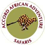 Accord African Safaris