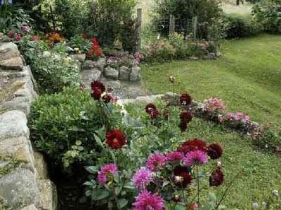 Consejos para embellecer el jardin i parte cuidado de plantas revista de cuidado de - Cuidado de jardines ...