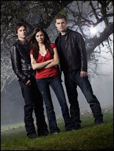 Libro: 01 Despertar (Vampire Diaries)