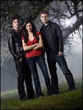 Libro: 01 Despertar (Vampire Diaries)
