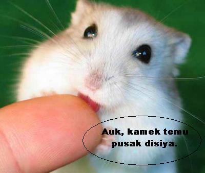Dialek Sarawak