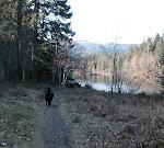 Puntledge Trail