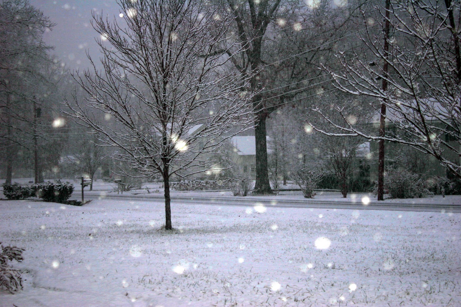 Image result for Atlanta gets an early 'White Christmas' this year