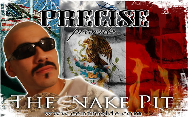 Audio: Precise - The Snake Pit