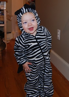 baby in a zebra outfit