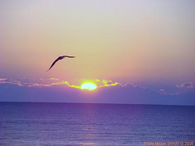 http://3.bp.blogspot.com/_IiIh2p2Ikpk/STVyTcTqXhI/AAAAAAAAER8/QlT89FbetyI/s400/lev%C3%A9+de+soleil+2008+048_GF.jpg