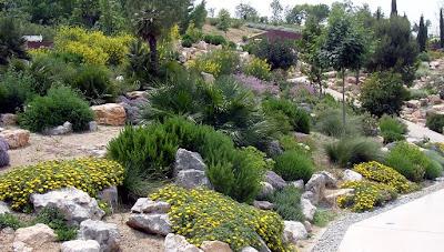 Refugiosverdes rock garden o jardines rocosos for Plantas jardin mediterraneo