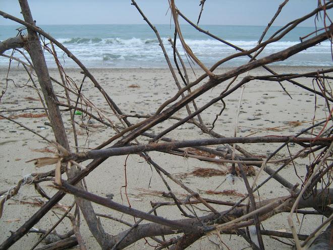 Spiaggia di S. Andrea Jonio - Panorama tre - Foto di Massimo Ranieri