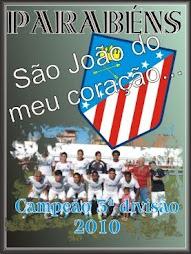 Campeão da Terceira Divisão 2010