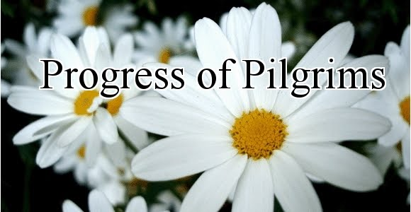 Progress of Pilgrims