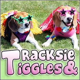 Tracksie and Tiggles