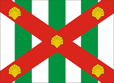 Bandeira do Municipio