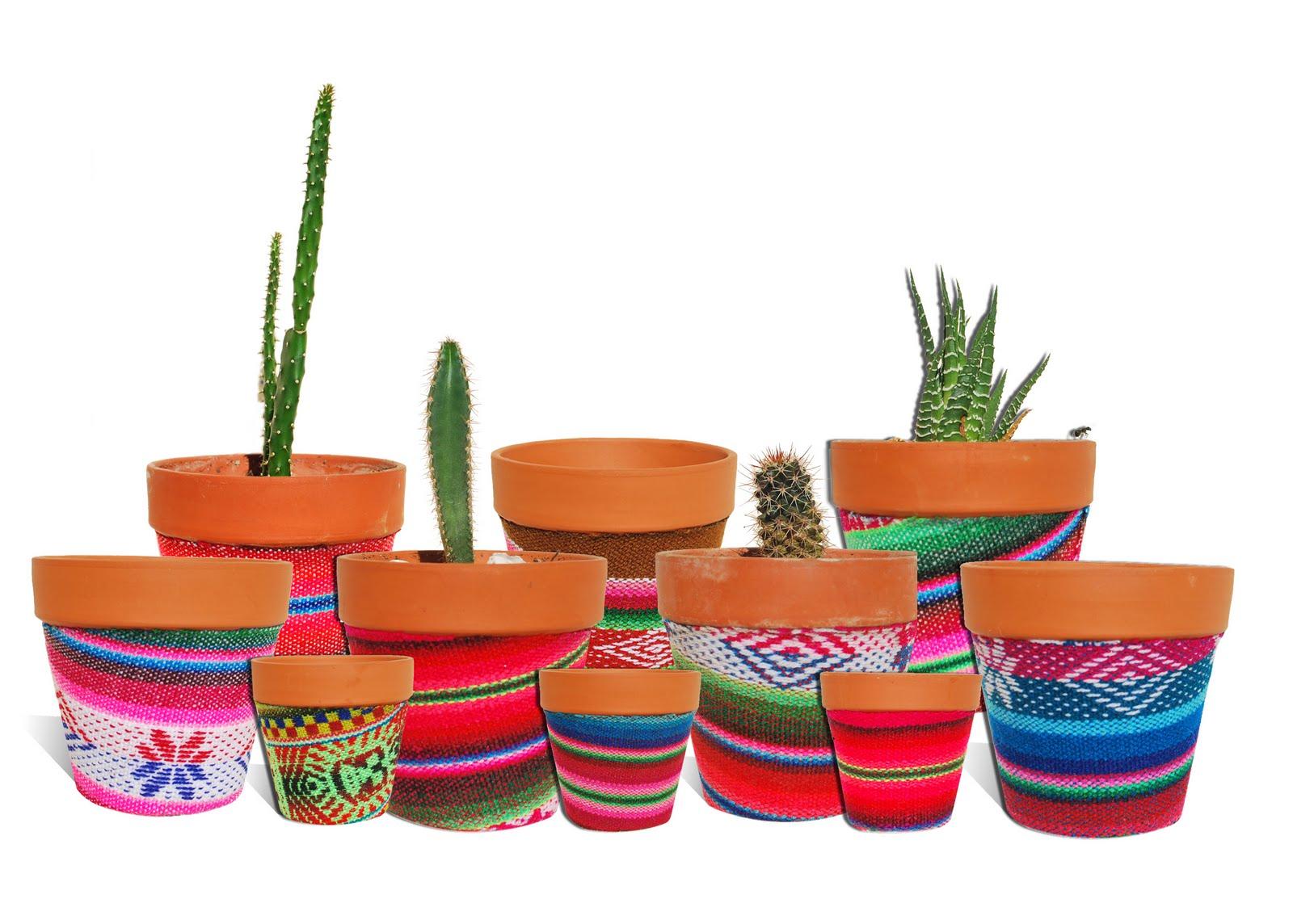 Mis 7 colores macetas para cactus - Decoracion con macetas ...