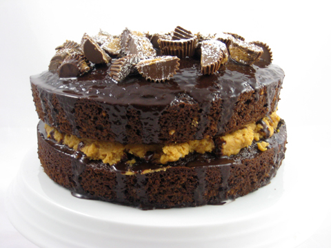 Chocolate Cake with Peanut Butter Filling ~ Best Italian Desserts