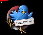 Cercaci su Twitter!