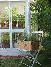 Burspråk växthus