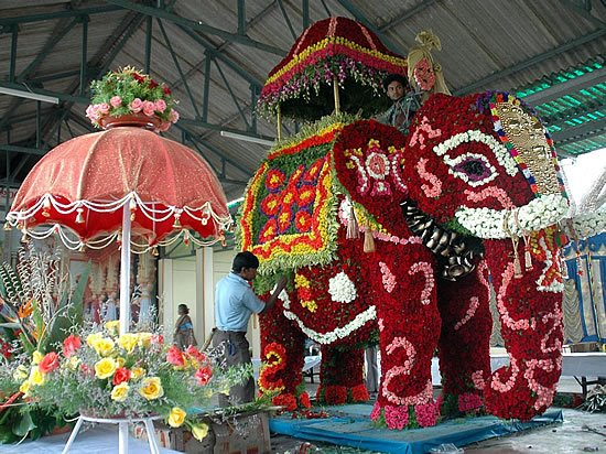 [Mysore+Dasara+2008+(16)-704201.jpg]