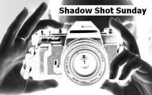 ShadowShotSunday